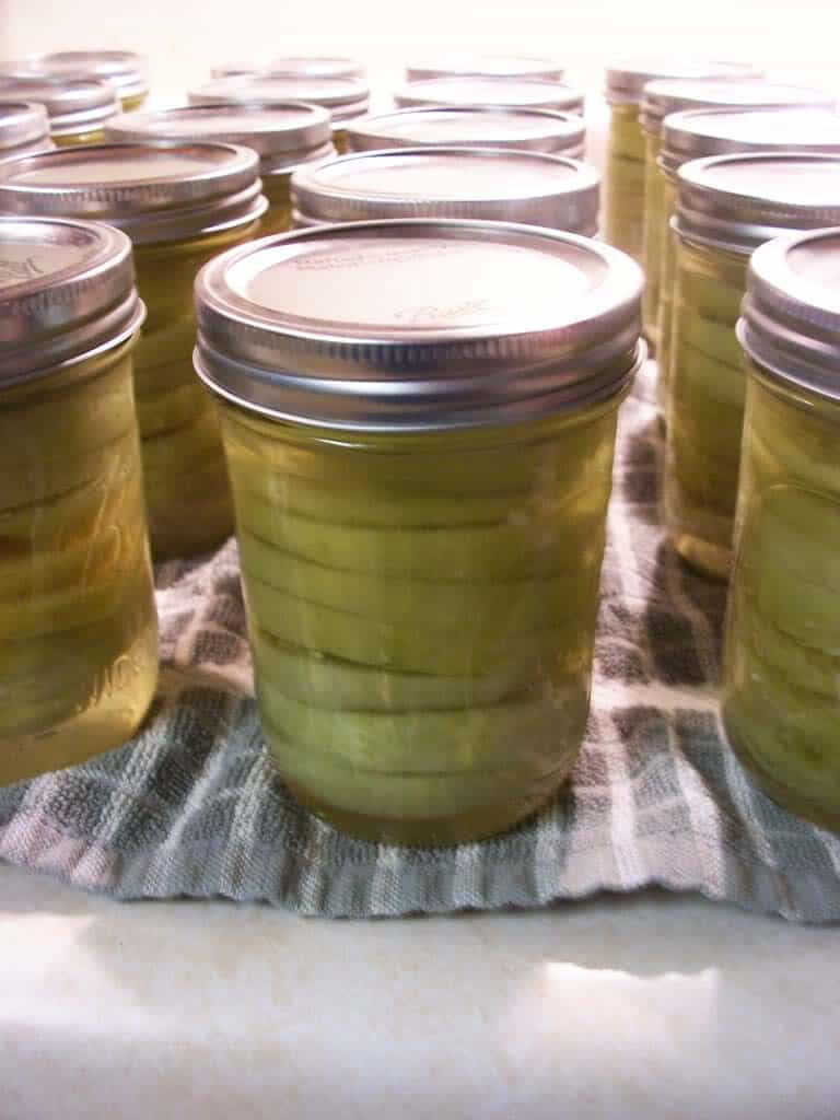 canned green tomatoes - recipe canning vegetables