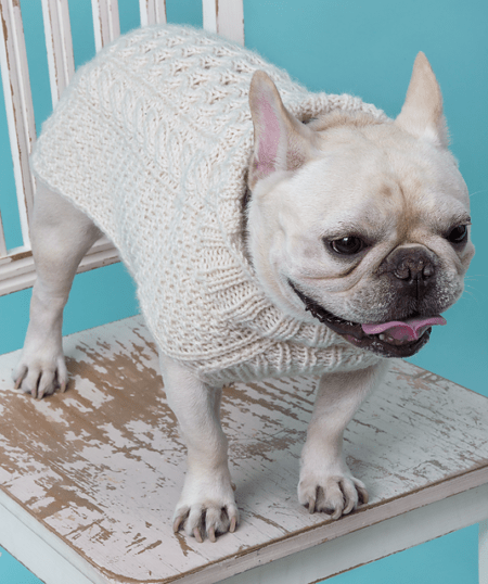 Here are some adorable knitting patterns to keep your furry friends warm. Find the perfect pattern in our list of 14 knit pet sweater patterns.