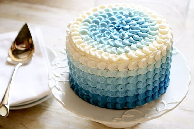 Ombre Petals - birthday cake decorating ideas