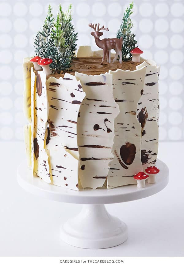 Winter Birch Log Cake - birthday cake decorating ideas