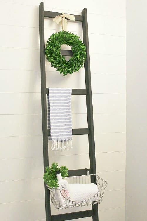 storage ladder - easy storage ideas