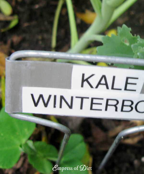 Use Tough Plant Tags - fall gardening tips