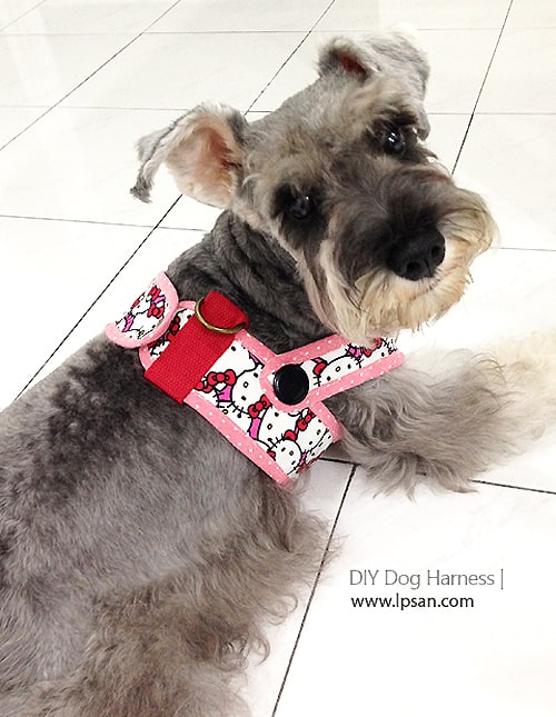 Harness - sew for your pets